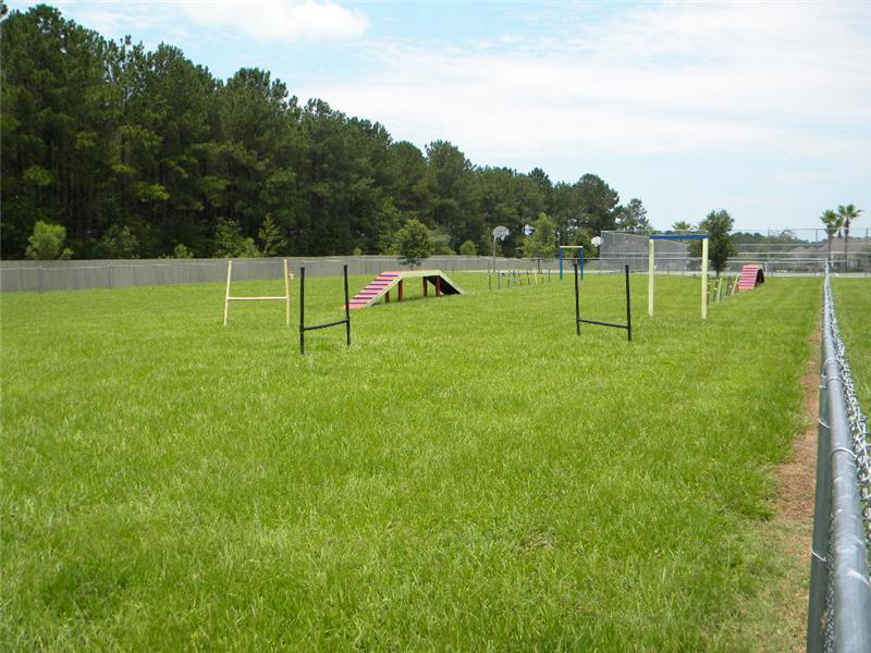 Fenced Dog Play Area