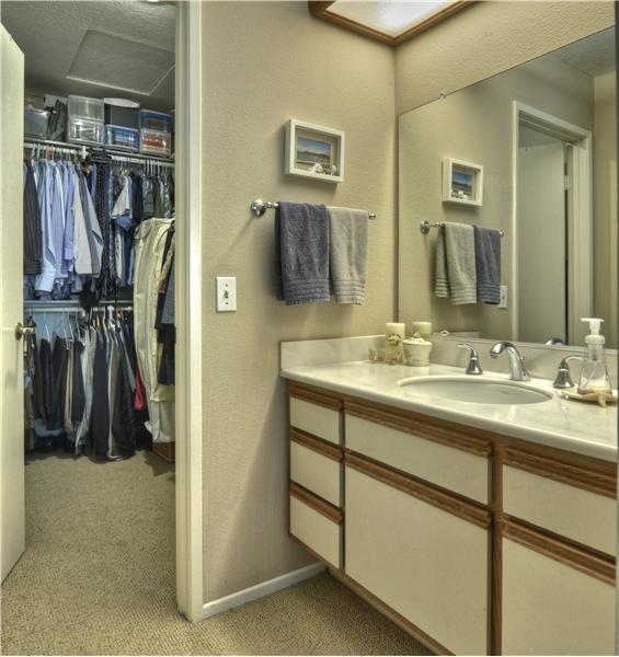 View of Extra 1/4 Bath (Sink & Vanity) & Roomy Walk-In Closet Within the Master Bedroom