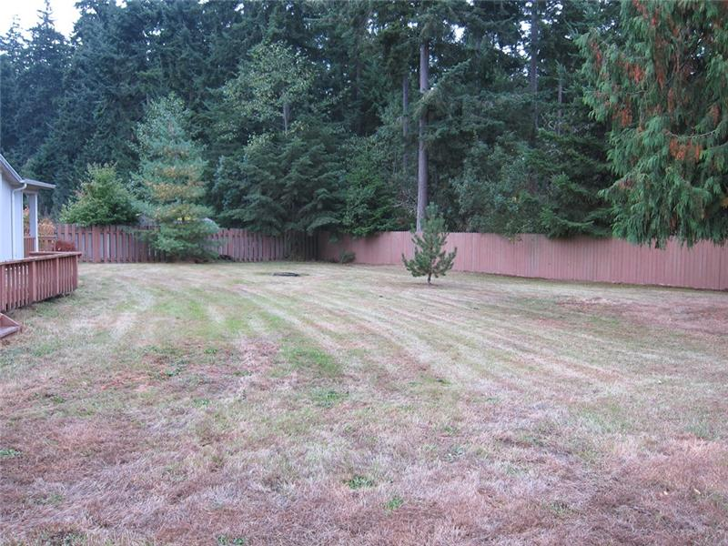 Large Level Lot Teeming w/ Possibilities