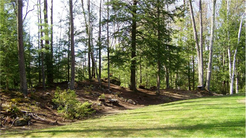 Wooded private lot
