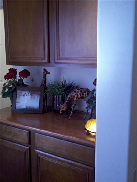 Cabinetry in Hallway