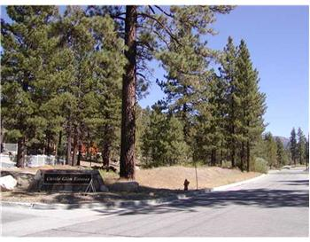 42201 Eagle Ridge, Big Bear Lake, CA