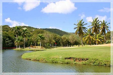 Golf at Carambola only a Short Drive Away