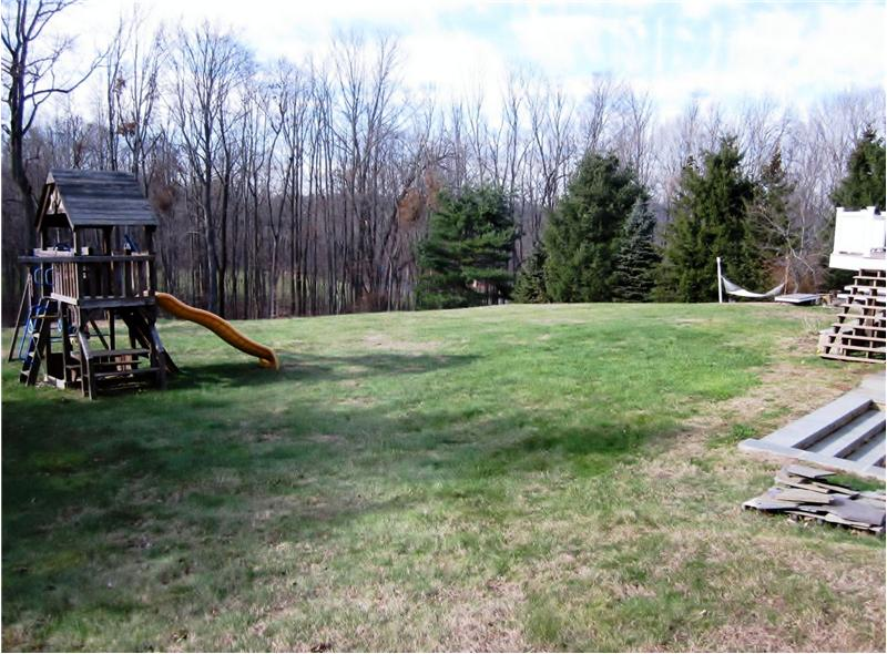 Playgym and backyard