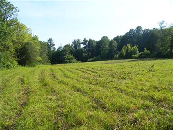 11.15 AC Gainesboro Grade, Cookeville, TN