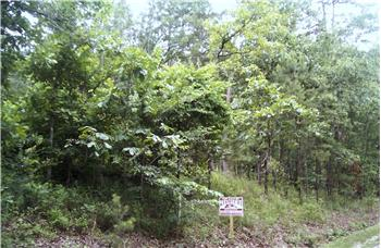 Choctaw Hills Ln #9158, Broken Bow, OK